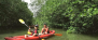 Mangrove Kayaking Adventure (Beginner Level) - 1 Adult
