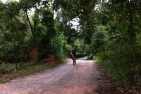 Ubin Bike Trail - Adult