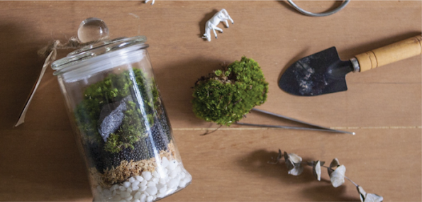 Moss Terrarium Workshop - 2 People - New Sept 2017