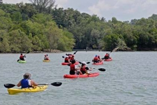 Sea Kayaking Adventure (Intermediate Level ) - 1 Child (7-12) - New Dec 2017