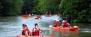 Mangrove Kayaking Adventure (Beginner Level) - 1 Child